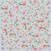 papel shabby 3 -180g dupla face 30.5x30.5