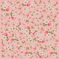 papel shabby 6 - 180g dupla face 30.5x30.5