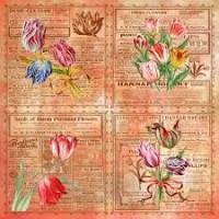 papel tulipas 1  - 180g dupla face 30.5x30.5