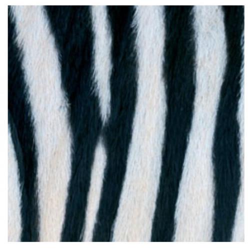 guardanapo zebra couture - 2 unid