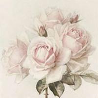 Guardanapo Vintage  rosa gd- 2 unid...
