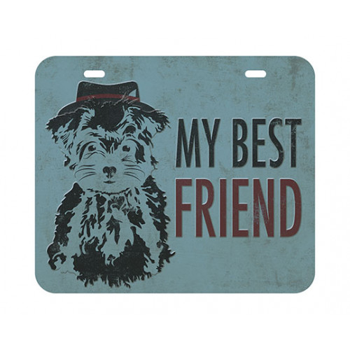 DECOR HOME - Placa My Best Friend 20x17