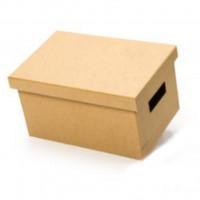 Caixa Box P 22x32x18..
